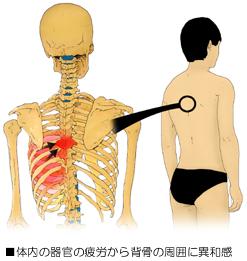 関節と自律神経
